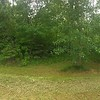 Pano 1 from hill towards back of house and our wooded property