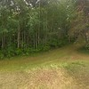 Pano 2 from hill towards back of house and our wooded property