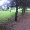 Pano backyard left and our grassy field right