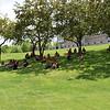 Enjoying the shade at Teen Arts