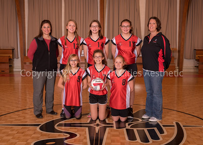 6-Volleyball-A