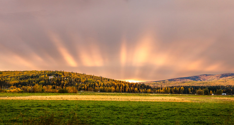 The setting sun glows over the fields of the Agriculture and Forestry Experiment Station Wednesday, Sept. 13.