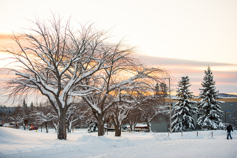 A student walks towards the Wood Center as the sun sets over campus on Nov. 17.