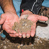 Volunteer David Arnold carefully sifts through the soil for artifacts