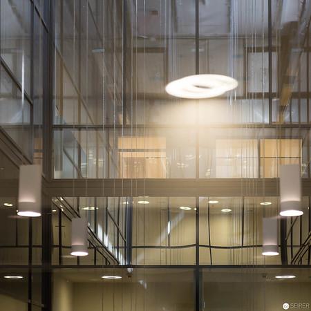 Innenraum mit Tageslicht und Begrünung
