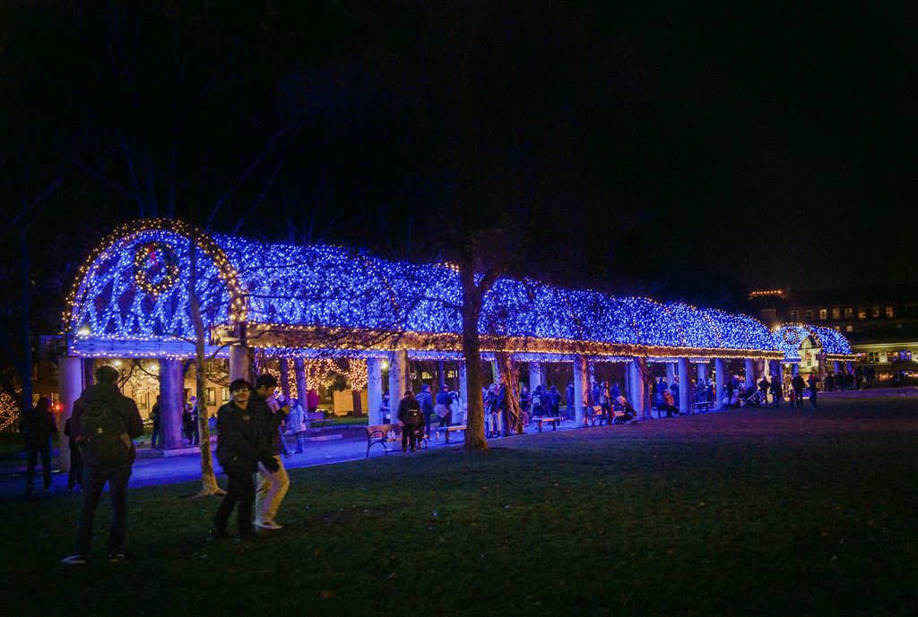 2017 11 trellis lighting at christopher columbus park mattconti