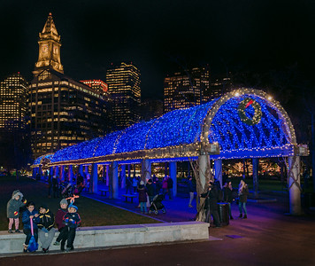 Newly lit blue trellis at Columbus Park in Boston