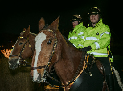 Park rangers on horses at the trellis lighting event