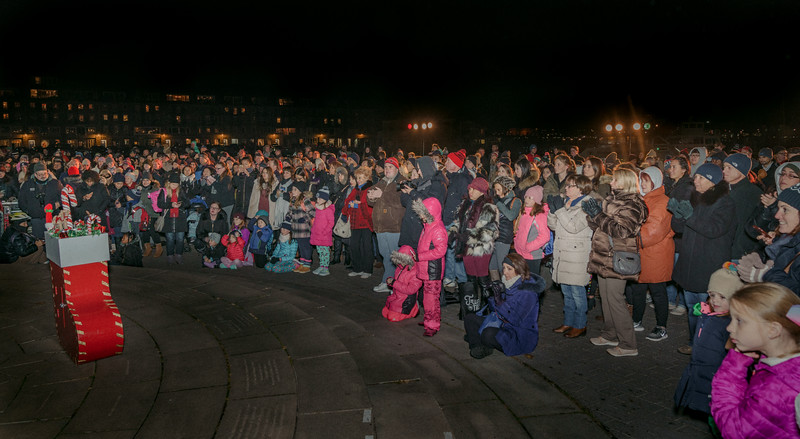 It was the largest crowed ever for the Columbus Park trellis lighting