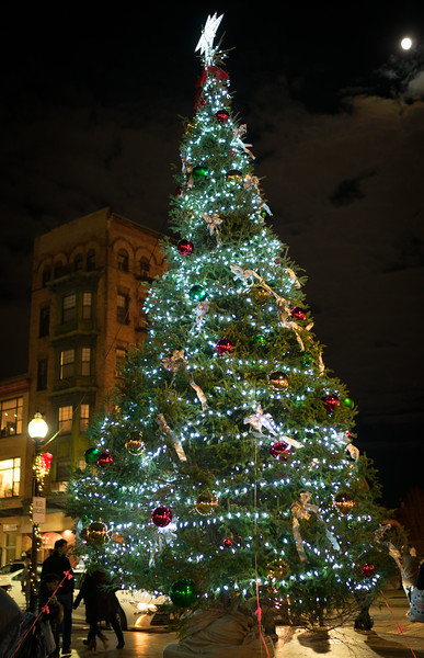 Christmas Tree at Hanover and Cross Streets in Boston's North End