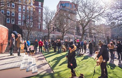 Humans and canines gather at the opening of the North End Dog Park