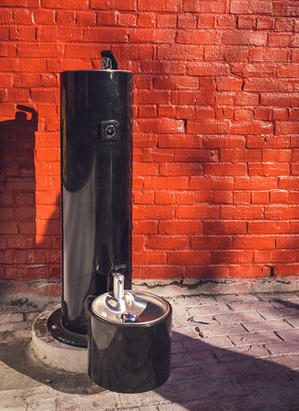 Water fountains for humans and canines