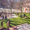 Dog park overlooks the DeFilippo Playground