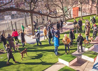 Dozens enjoy the new dog park