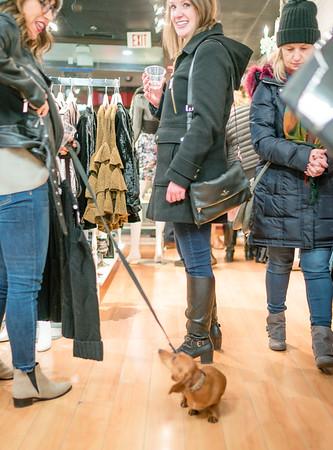 Dog shopping at LIT