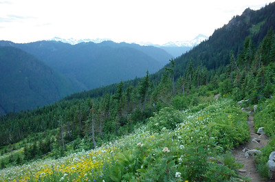 Glacier Peak - Jul 19-23