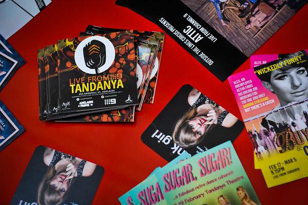 Tandanya opening night