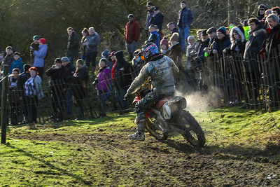 Wild and Woolly 2017