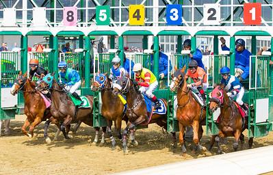 Race 3 - 20170318-20134