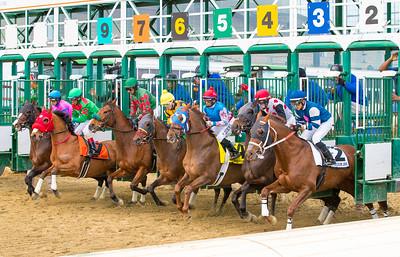 Race 11 - 20170318-20565