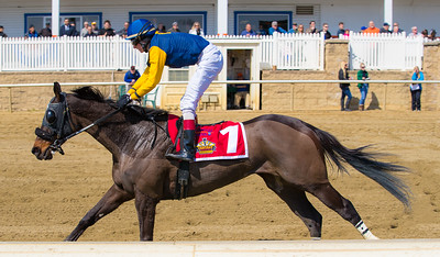 Race 1 - 20170318-20086