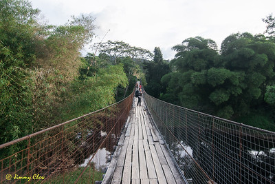Bridge crossing to homestay at Long Pa' Sia'.