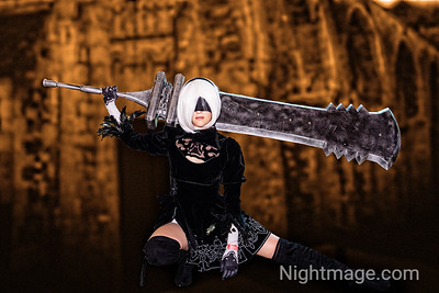 2B and her sword Beastlord