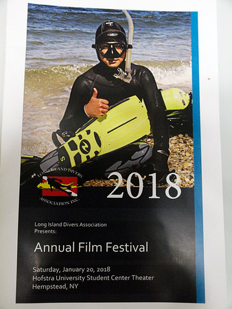 2018 LIDA Film Festival