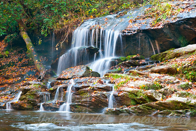 Toms Branch Falls, NC