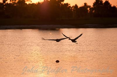 Flying over Otter Lake