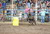 Barrel racer Alison Harper