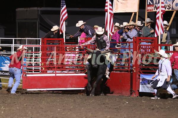 Bull Rider Stitch Gibson