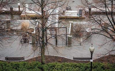 Flooded Marina Park at Union Wharf
