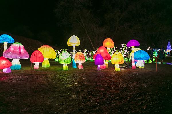 Winter Lantern Festival 2018
