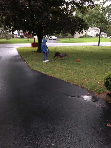 Taz & Grandma playing kickpall