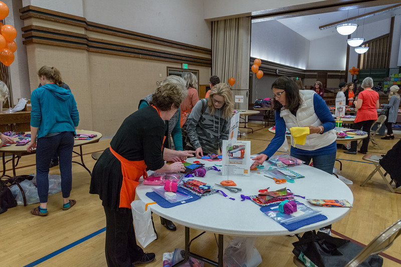 2me136-2019-03-02 Mormon Newsroom -Days for Girls -8342