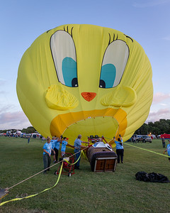 Inflating Yellow Bird