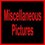 A 19LABTRI MISC-11002