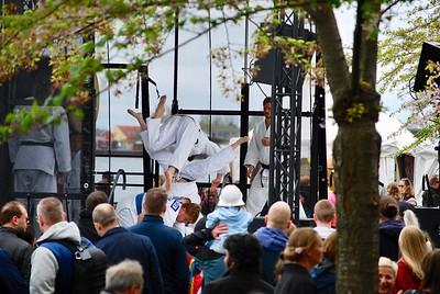 Sakura festival, Copenhagen, Denmark