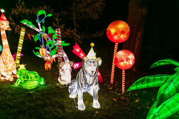 NYC Winter Lantern Festival 2019