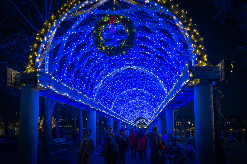 Under the blue lights of the Columbus Park trellis