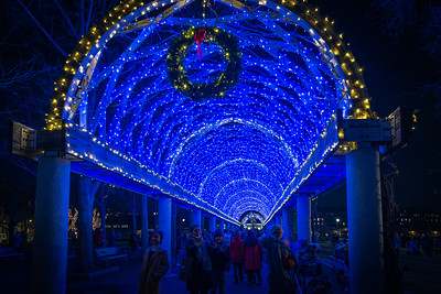 Under the blue lights of the Columbus Park trellis