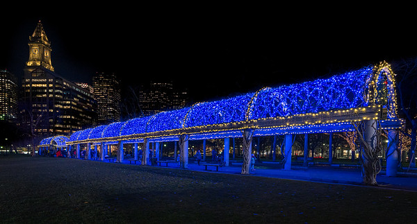 2019 Columbus Park Trellis Lighting
