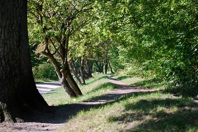 Path to peacefulness