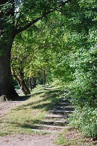 Path to peacefulness-2