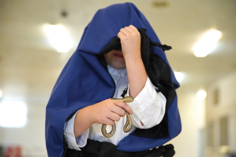 Matthew Gaston | The Sheridan Press   <br /> Katja Mikulin, 9, dons wizard robes for the costum portion of the pocket pets competition at the Sheridan County Fair Wednesday, July 29, 2020.