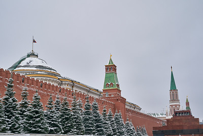 20201121 Moscow img 0008