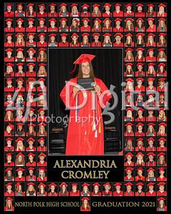 Alexandria Cromley comp