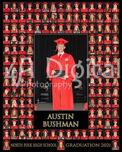 Austin Bushman comp
