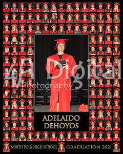 Adelaido Dehoyos comp